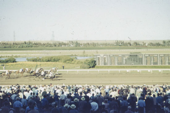 featured image The Melbourne Cup A Page of History First Race and Archer's Legend - The Melbourne Cup - A Page of History