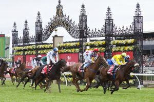2011 emirates melbourne cup please credit photo www sdpmedia com au 300x199 - The Melbourne Cup-winning horse trainer was convicted of cruelty to the goat