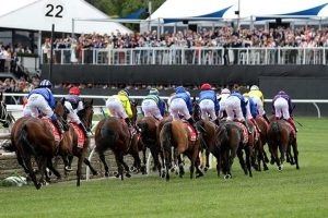 melbourne cup field 2018 300x200 - Melbourne Cup Horse Racing: the greatest prize race in the world