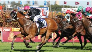 840426 orig 300x169 - Melbourne Cup: Vow and Declare won the most prestigious horse race in Australia