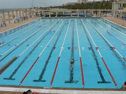 Betting on swimming - Betting on swimming: Things to keep in mind
